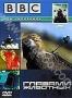 BBC: Глазами животных (2004)