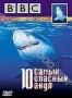 BBC: 10 самых опасных акул (2004)