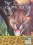 Animal Planet. Так близко к опасности (2004)