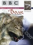 BBC: Волк. Лесной разбойник (1997)
