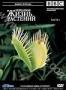 BBC: Невидимая жизнь растений. Часть 1 (1995)