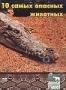 Animal Planet: 10 самых опасных животных (50)