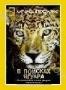 НГО: В поисках ягуара (2003)