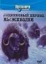 Discovery: Ледниковый период: Выжившие (1997)