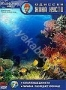 Одиссея Жака Кусто №7: Коралловые джунгли. Палаван: последнее уб