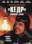 """Кедр"" пронзает небо (2 DVD) (2011)"